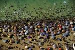 Algeria beach